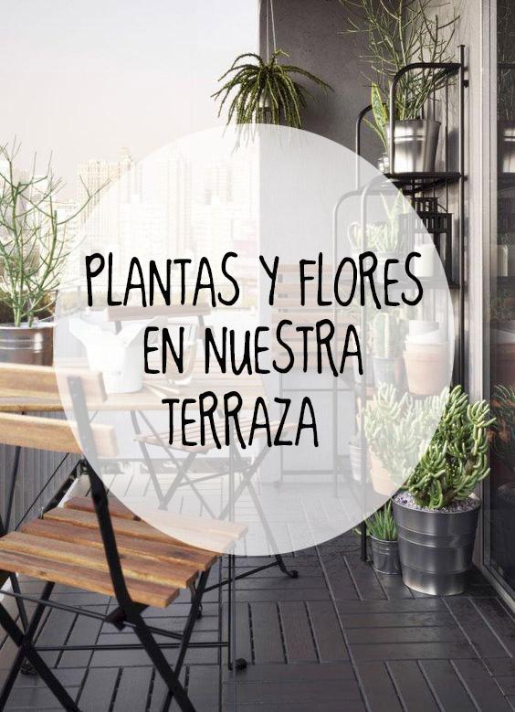 PLANTASYFLORES