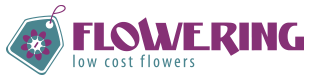 ▷ Floristería online Flowering | Low cost Flowers